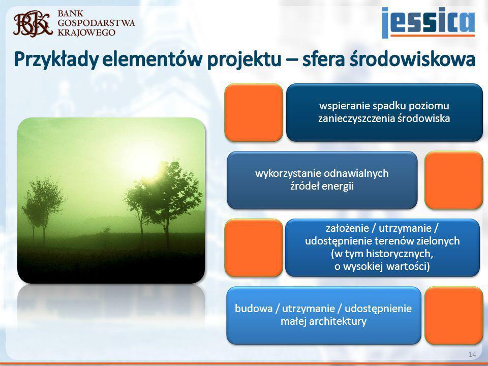 Przykłady elementów projektu – sfera środowiskowa