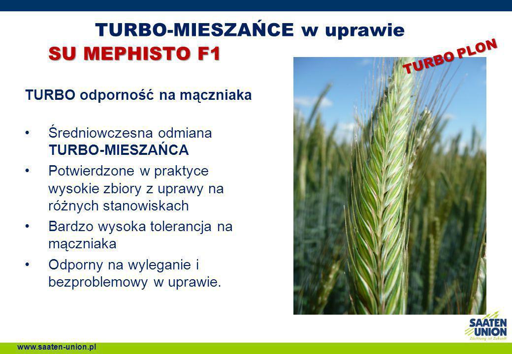 TURBO-MIESZAŃCE w uprawie