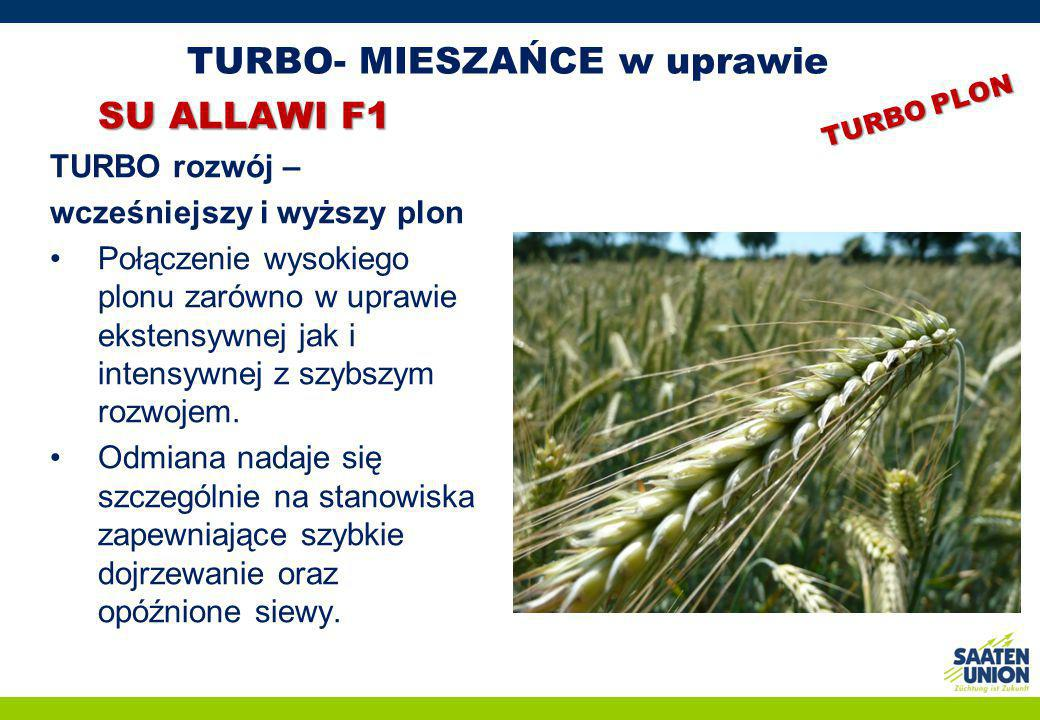 TURBO- MIESZAŃCE w uprawie