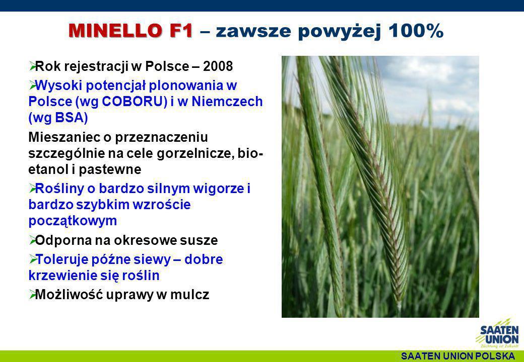 MINELLO F1 – zawsze powyżej 100%