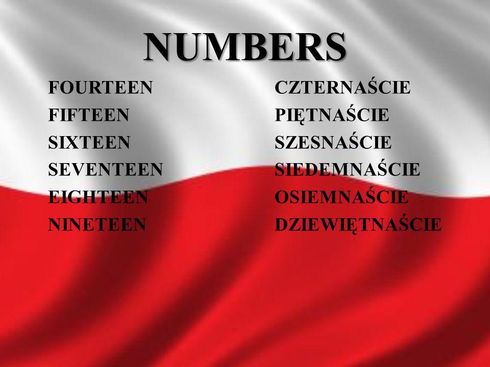 NUMBERS FOURTEEN CZTERNAŚCIE FIFTEEN PIĘTNAŚCIE SIXTEEN SZESNAŚCIE SEVENTEEN SIEDEMNAŚCIE EIGHTEEN OSIEMNAŚCIE NINETEEN DZIEWIĘTNAŚCIE