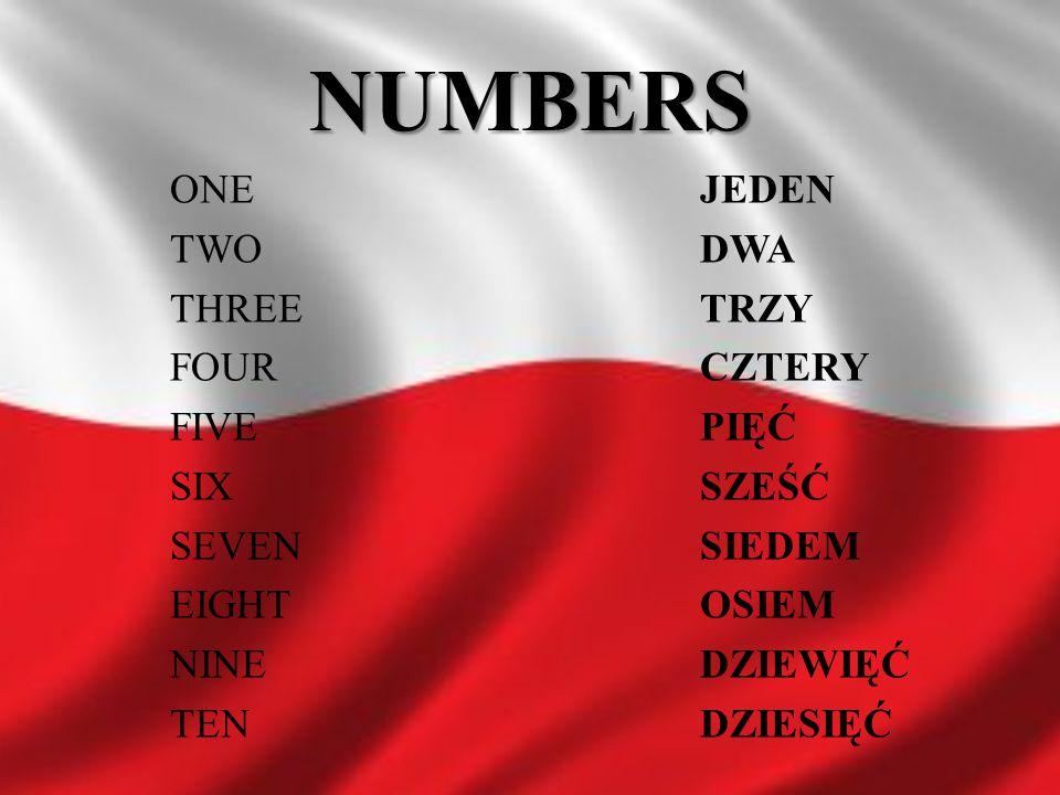 NUMBERS ONE JEDEN TWO DWA THREE TRZY FOUR CZTERY FIVE PIĘĆ SIX SZEŚĆ SEVEN SIEDEM EIGHT OSIEM NINE DZIEWIĘĆ TEN DZIESIĘĆ