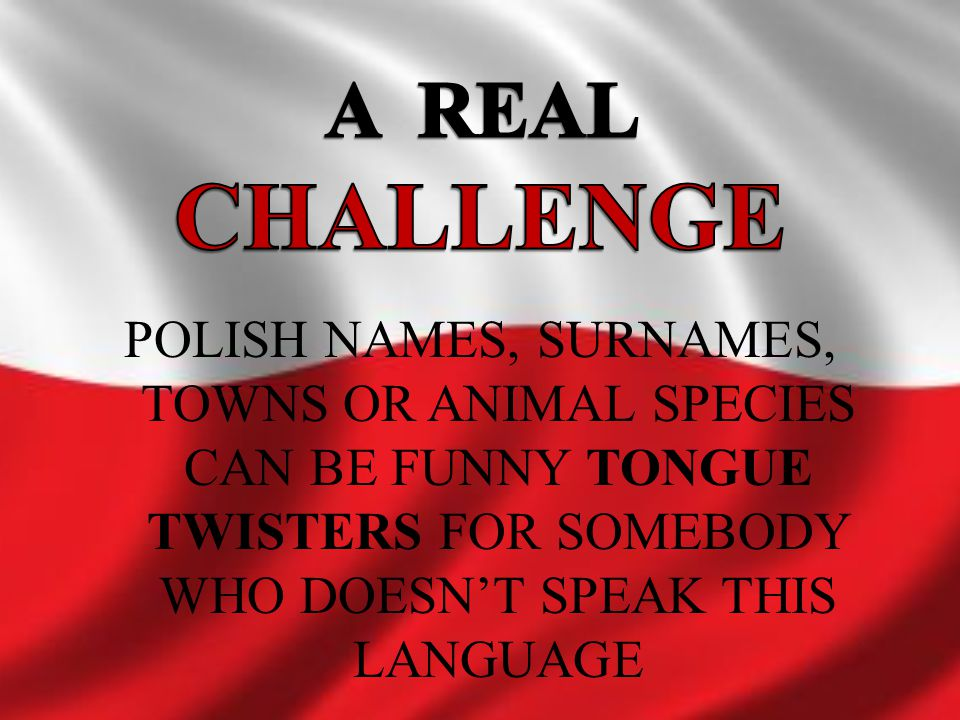 A REAL CHALLENGE POLISH NAMES, SURNAMES, TOWNS OR ANIMAL SPECIES CAN BE FUNNY TONGUE TWISTERS FOR SOMEBODY WHO DOESN'T SPEAK THIS LANGUAGE.