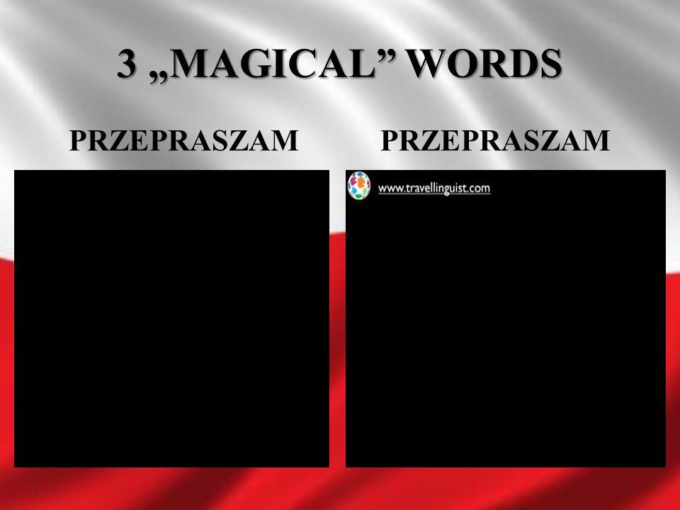 """3 """"MAGICAL WORDS PRZEPRASZAM PRZEPRASZAM"""