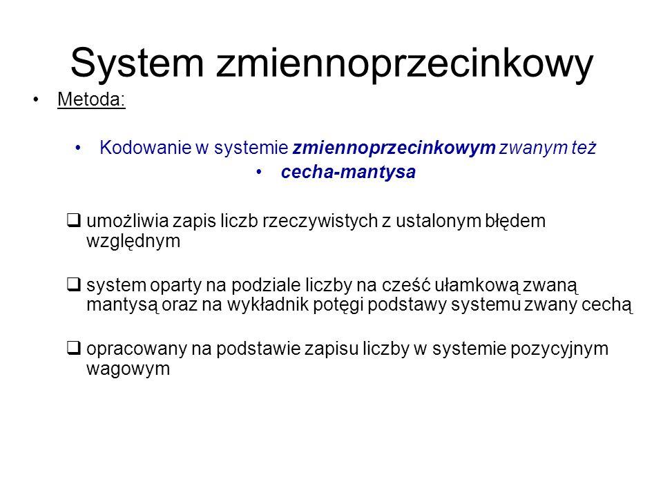 System zmiennoprzecinkowy