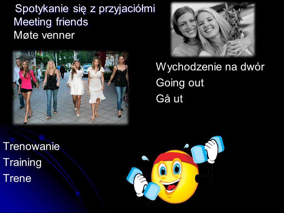 Spotykanie się z przyjaciółmi Meeting friends Møte venner