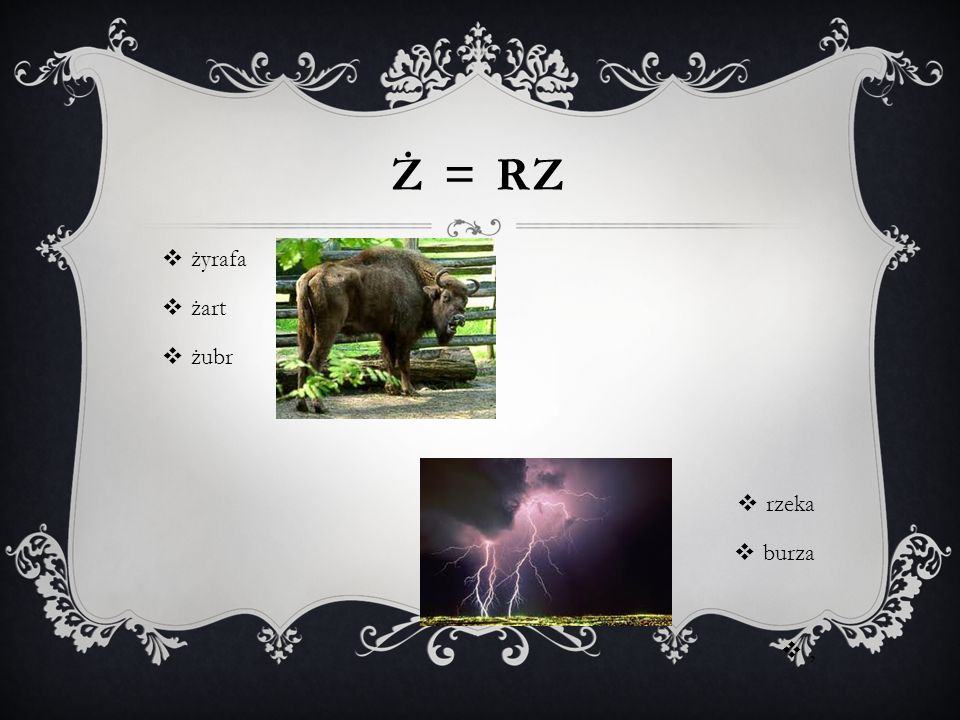 Ż = Rz żyrafa żart żubr rzeka burza ,