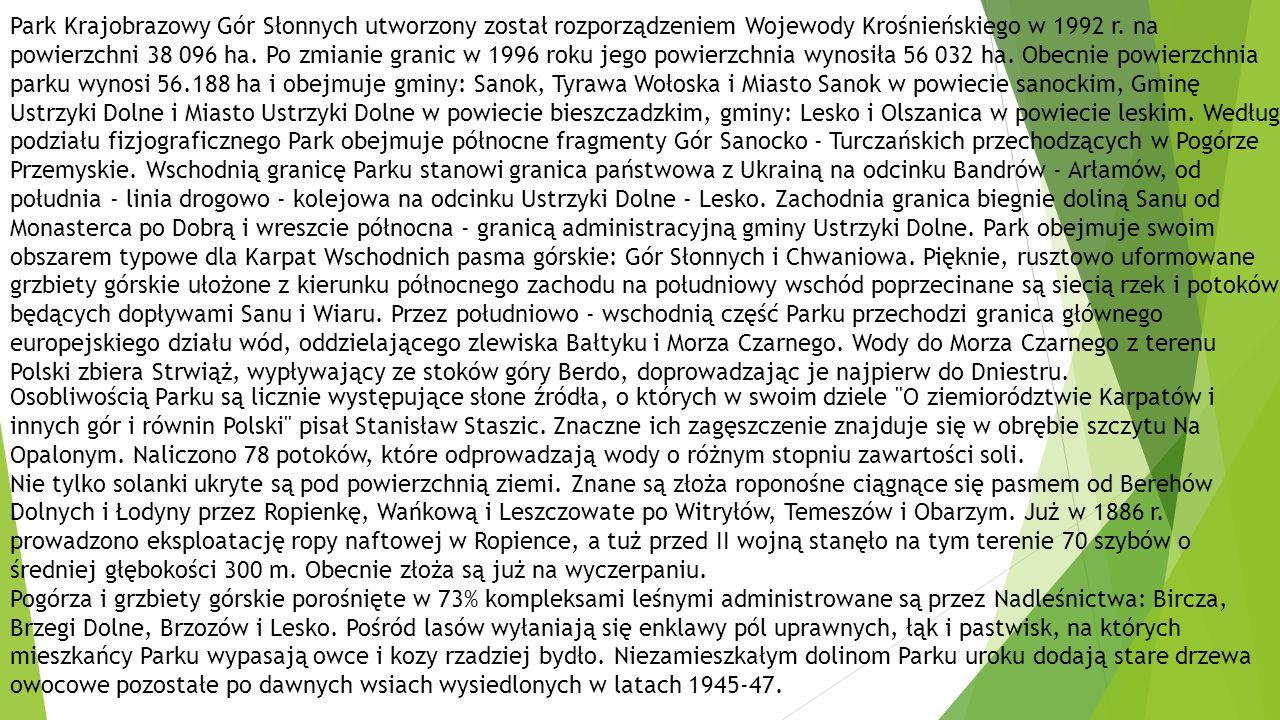 Park Krajobrazowy Gór Słonnych utworzony został rozporządzeniem Wojewody Krośnieńskiego w 1992 r. na powierzchni 38 096 ha. Po zmianie granic w 1996 roku jego powierzchnia wynosiła 56 032 ha. Obecnie powierzchnia parku wynosi 56.188 ha i obejmuje gminy: Sanok, Tyrawa Wołoska i Miasto Sanok w powiecie sanockim, Gminę Ustrzyki Dolne i Miasto Ustrzyki Dolne w powiecie bieszczadzkim, gminy: Lesko i Olszanica w powiecie leskim. Według podziału fizjograficznego Park obejmuje północne fragmenty Gór Sanocko - Turczańskich przechodzących w Pogórze Przemyskie. Wschodnią granicę Parku stanowi granica państwowa z Ukrainą na odcinku Bandrów - Arłamów, od południa - linia drogowo - kolejowa na odcinku Ustrzyki Dolne - Lesko. Zachodnia granica biegnie doliną Sanu od Monasterca po Dobrą i wreszcie północna - granicą administracyjną gminy Ustrzyki Dolne. Park obejmuje swoim obszarem typowe dla Karpat Wschodnich pasma górskie: Gór Słonnych i Chwaniowa. Pięknie, rusztowo uformowane grzbiety górskie ułożone z kierunku północnego zachodu na południowy wschód poprzecinane są siecią rzek i potoków będących dopływami Sanu i Wiaru. Przez południowo - wschodnią część Parku przechodzi granica głównego europejskiego działu wód, oddzielającego zlewiska Bałtyku i Morza Czarnego. Wody do Morza Czarnego z terenu Polski zbiera Strwiąż, wypływający ze stoków góry Berdo, doprowadzając je najpierw do Dniestru.