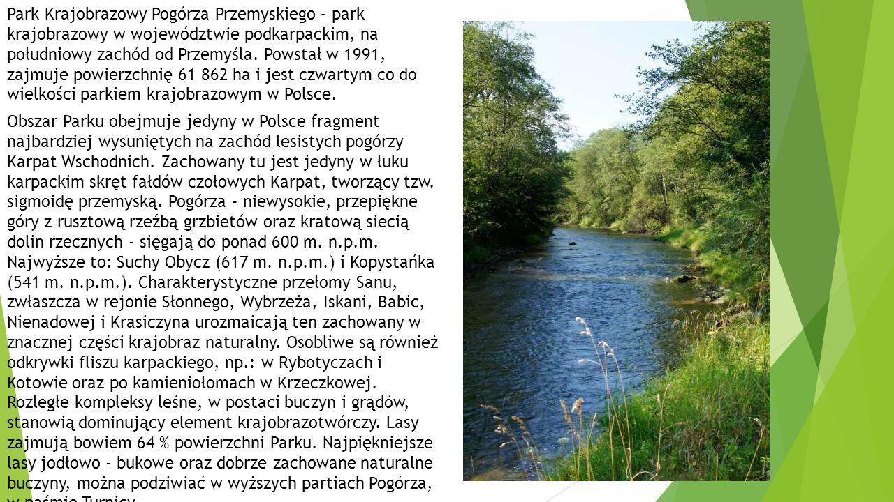 Park Krajobrazowy Pogórza Przemyskiego – park krajobrazowy w województwie podkarpackim, na południowy zachód od Przemyśla. Powstał w 1991, zajmuje powierzchnię 61 862 ha i jest czwartym co do wielkości parkiem krajobrazowym w Polsce.