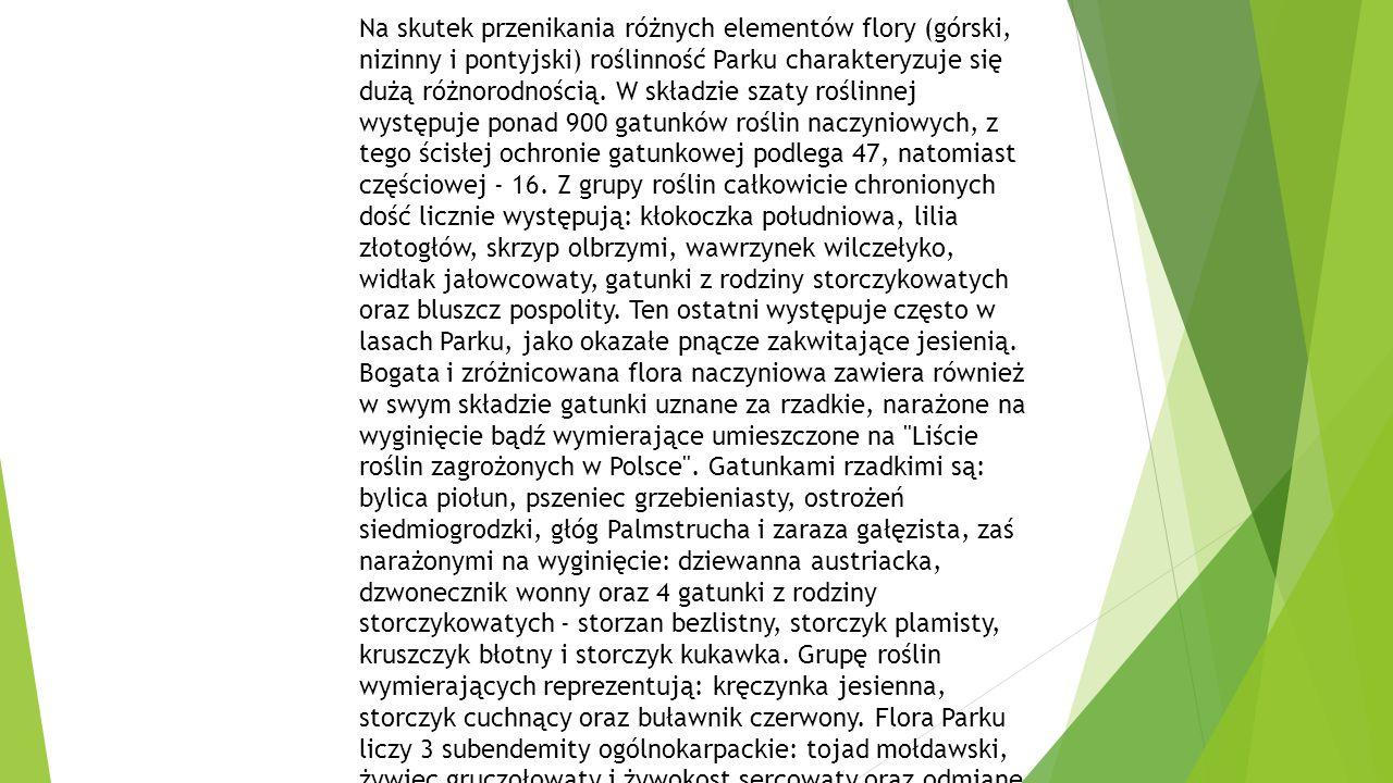 Na skutek przenikania różnych elementów flory (górski, nizinny i pontyjski) roślinność Parku charakteryzuje się dużą różnorodnością.