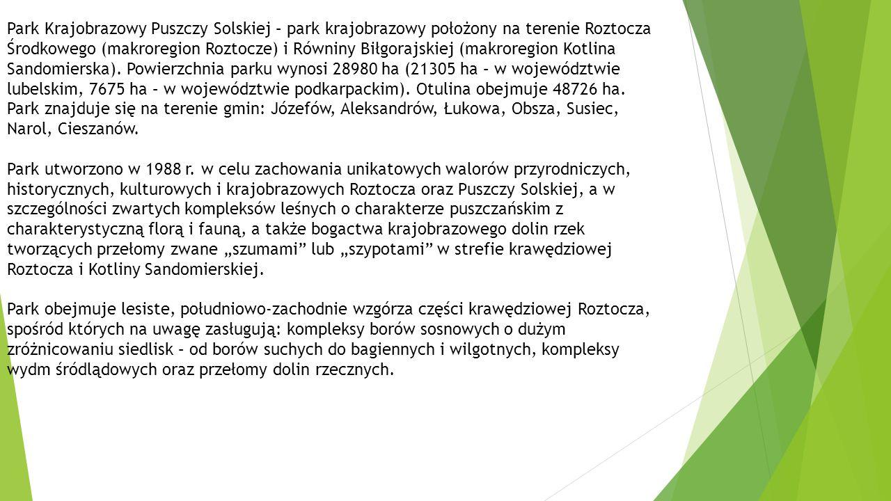Park Krajobrazowy Puszczy Solskiej – park krajobrazowy położony na terenie Roztocza Środkowego (makroregion Roztocze) i Równiny Biłgorajskiej (makroregion Kotlina Sandomierska). Powierzchnia parku wynosi 28980 ha (21305 ha – w województwie lubelskim, 7675 ha – w województwie podkarpackim). Otulina obejmuje 48726 ha. Park znajduje się na terenie gmin: Józefów, Aleksandrów, Łukowa, Obsza, Susiec, Narol, Cieszanów.