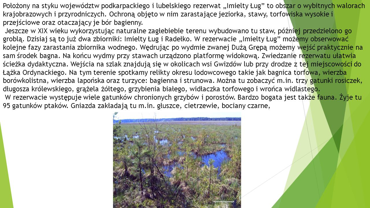 """Położony na styku województw podkarpackiego i lubelskiego rezerwat """"Imielty Ług to obszar o wybitnych walorach krajobrazowych i przyrodniczych. Ochroną objęto w nim zarastające jeziorka, stawy, torfowiska wysokie i przejściowe oraz otaczający je bór bagienny."""