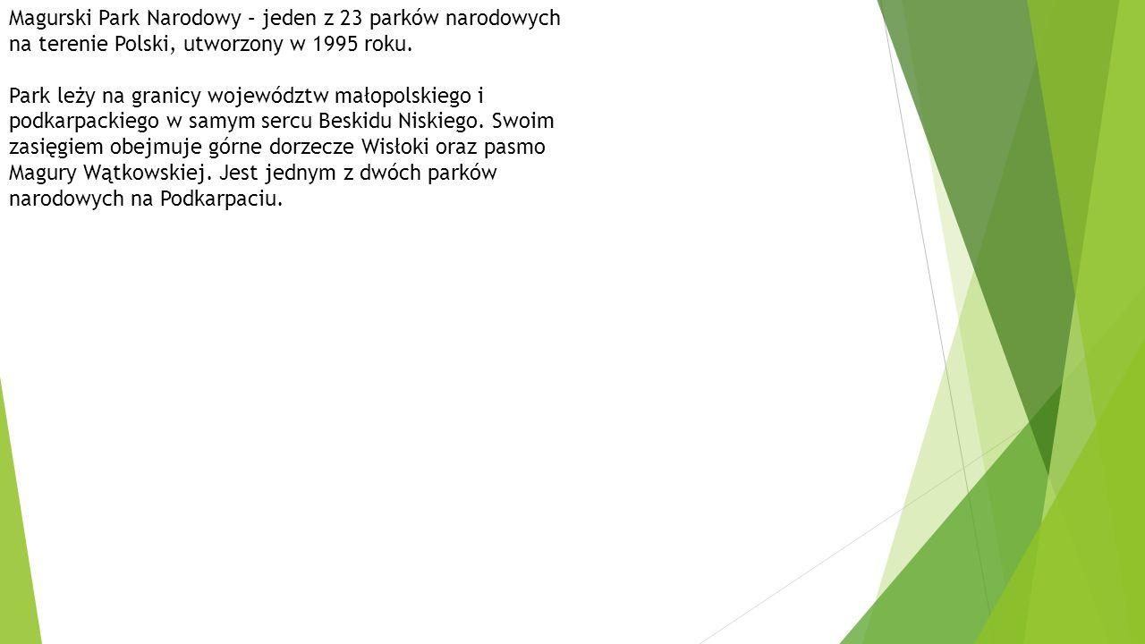 Magurski Park Narodowy – jeden z 23 parków narodowych na terenie Polski, utworzony w 1995 roku.