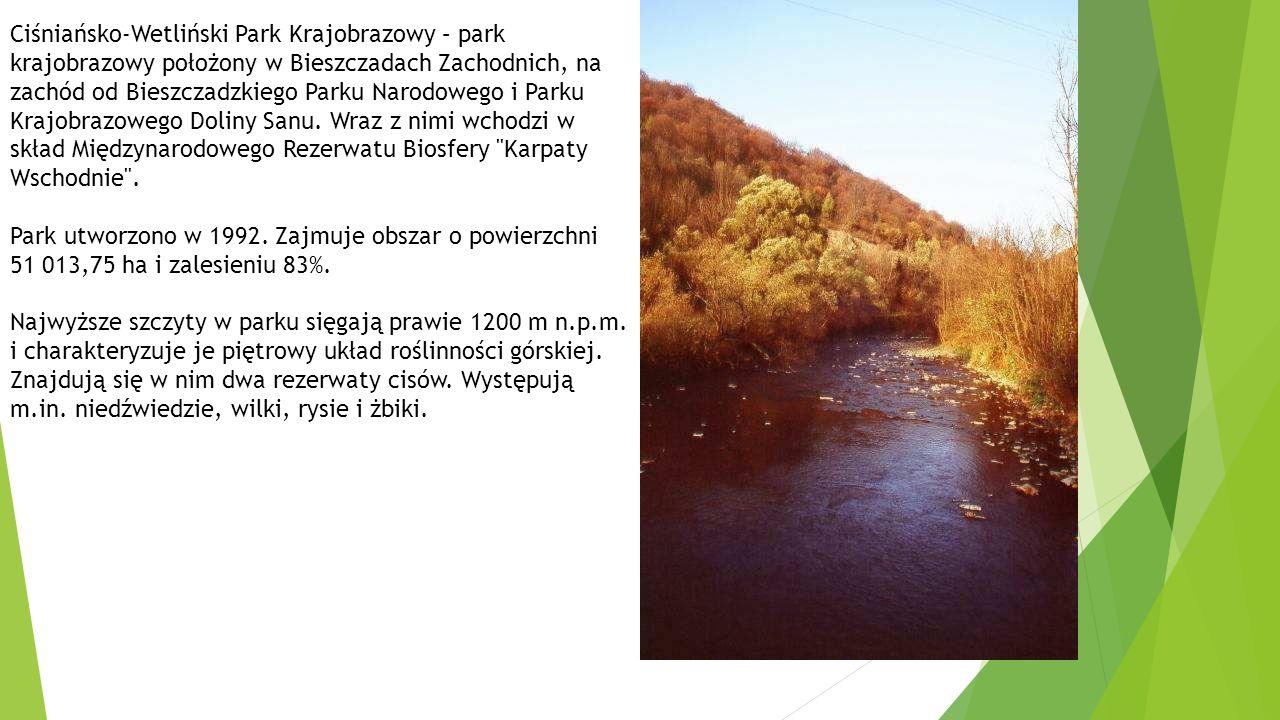 Ciśniańsko-Wetliński Park Krajobrazowy – park krajobrazowy położony w Bieszczadach Zachodnich, na zachód od Bieszczadzkiego Parku Narodowego i Parku Krajobrazowego Doliny Sanu. Wraz z nimi wchodzi w skład Międzynarodowego Rezerwatu Biosfery Karpaty Wschodnie .