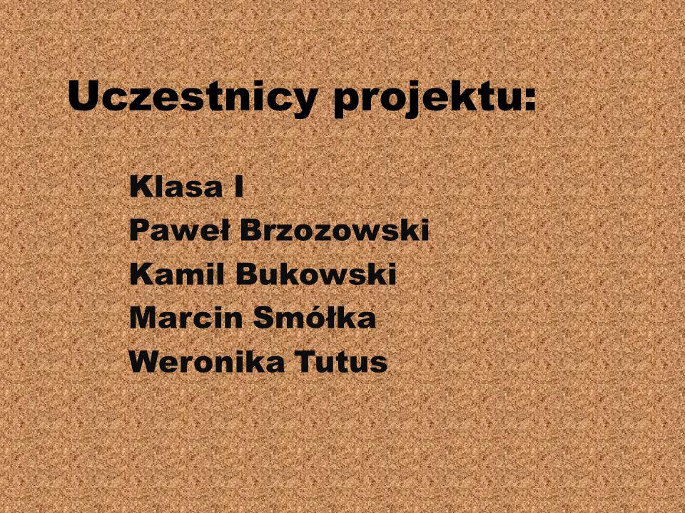 Klasa I Paweł Brzozowski Kamil Bukowski Marcin Smółka Weronika Tutus