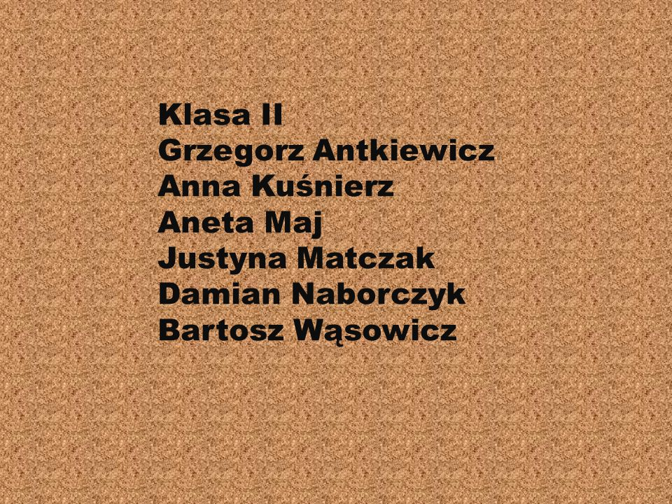 Klasa II Grzegorz Antkiewicz Anna Kuśnierz Aneta Maj Justyna Matczak Damian Naborczyk Bartosz Wąsowicz