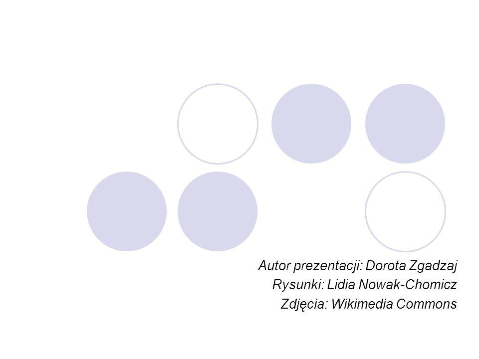 Autor prezentacji: Dorota Zgadzaj