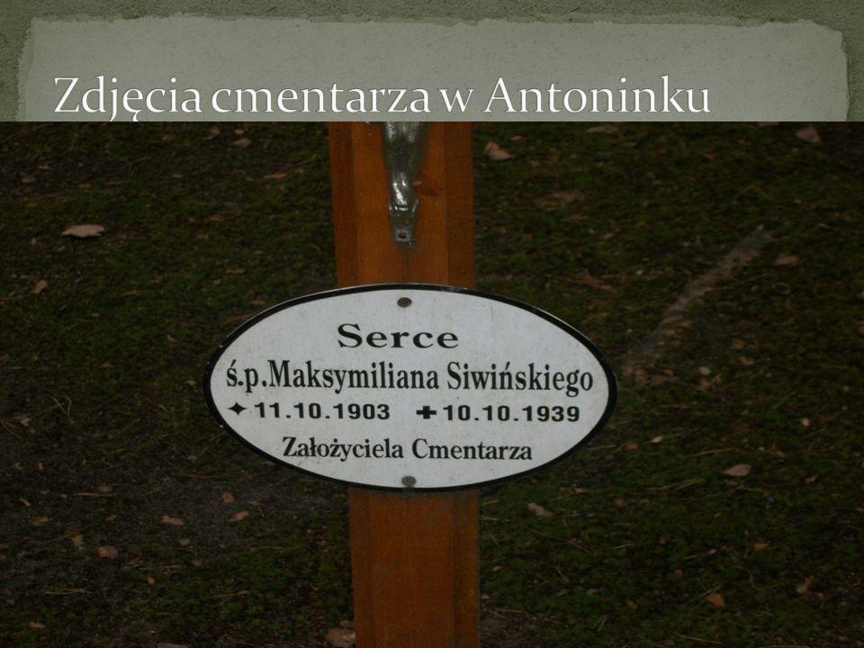 Zdjęcia cmentarza w Antoninku