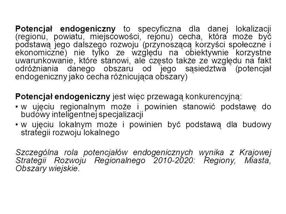 Potencjał endogeniczny to specyficzna dla danej lokalizacji (regionu, powiatu, miejscowości, rejonu) cecha, która może być podstawą jego dalszego rozwoju (przynoszącą korzyści społeczne i ekonomiczne) nie tylko ze względu na obiektywnie korzystne uwarunkowanie, które stanowi, ale często także ze względu na fakt odróżniania danego obszaru od jego sąsiedztwa (potencjał endogeniczny jako cecha różnicująca obszary)