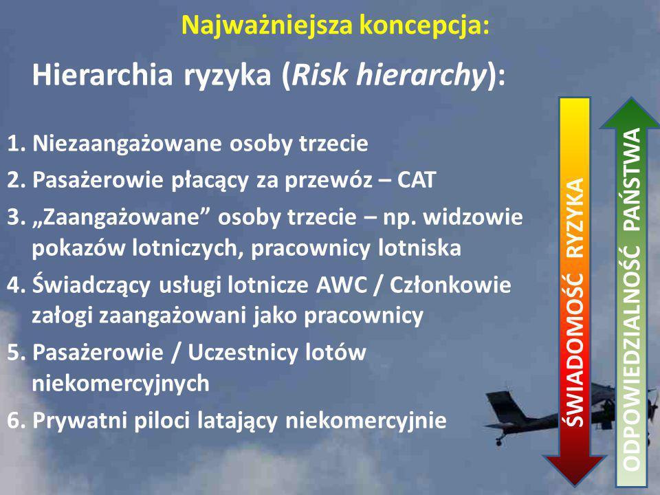 Hierarchia ryzyka (Risk hierarchy):