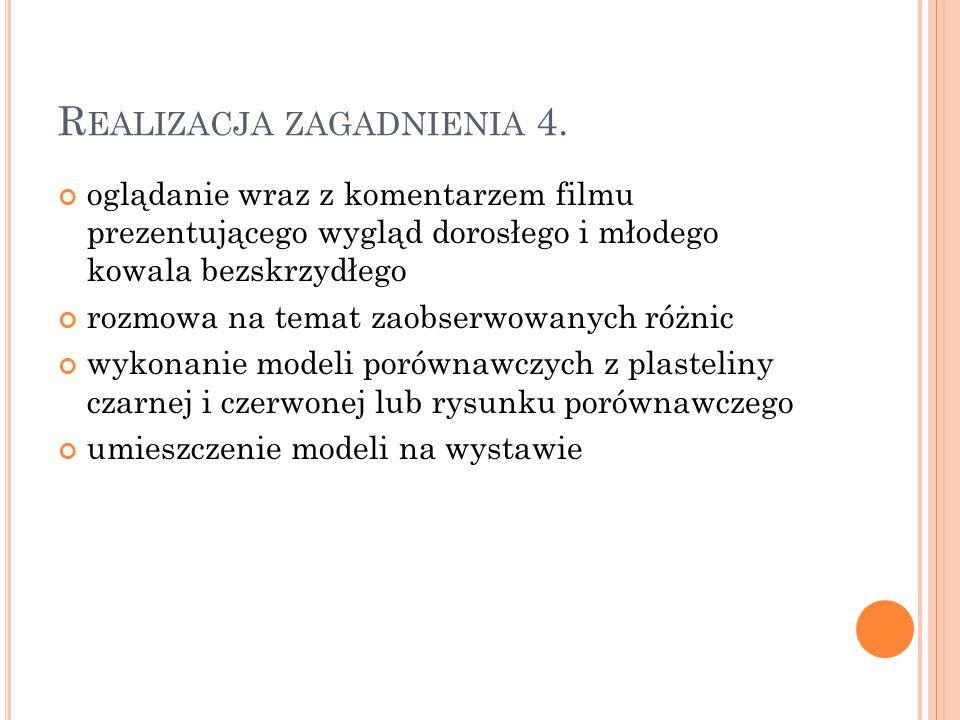 Realizacja zagadnienia 4.