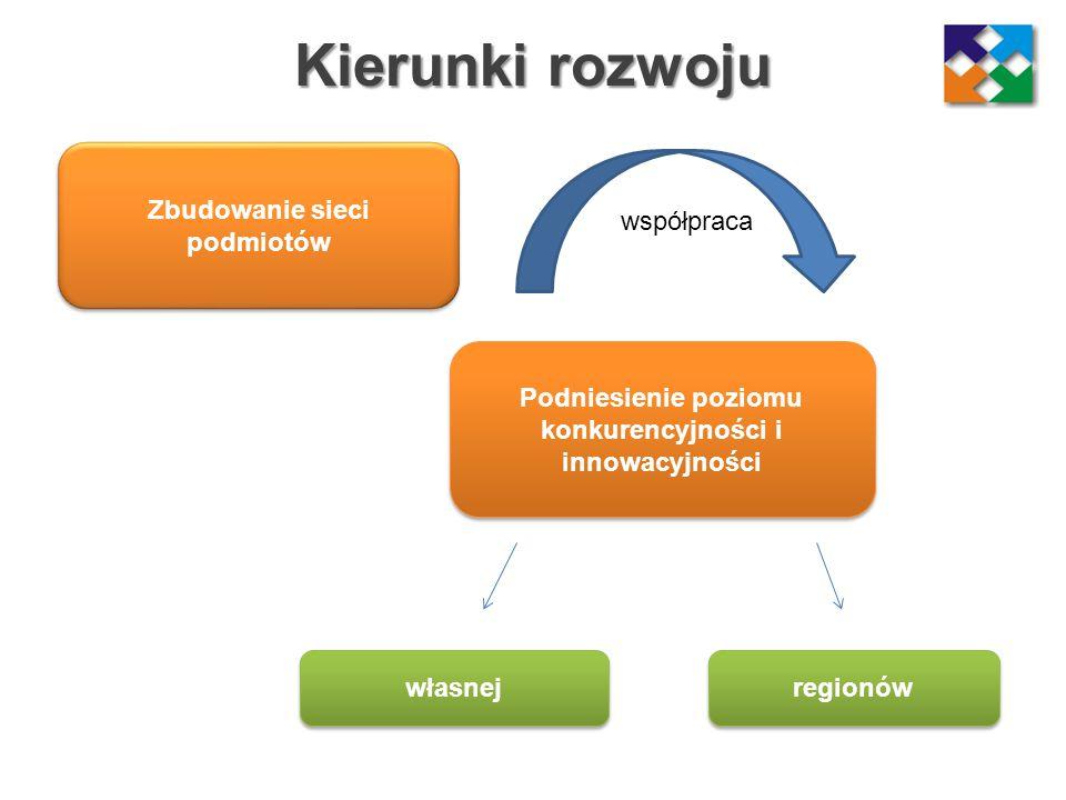 Kierunki rozwoju Zbudowanie sieci podmiotów współpraca