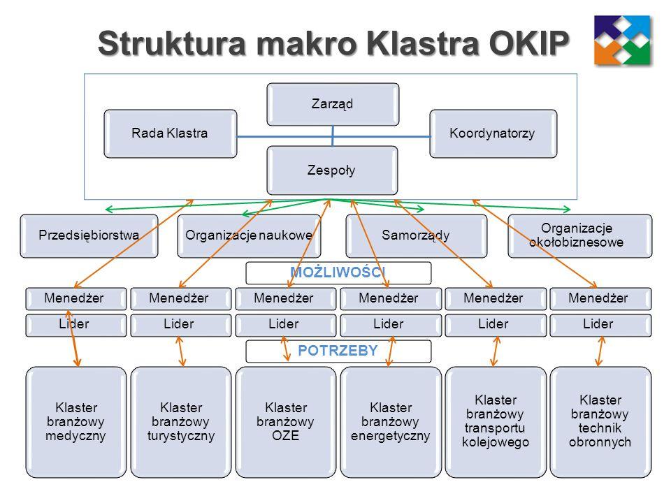 Struktura makro Klastra OKIP