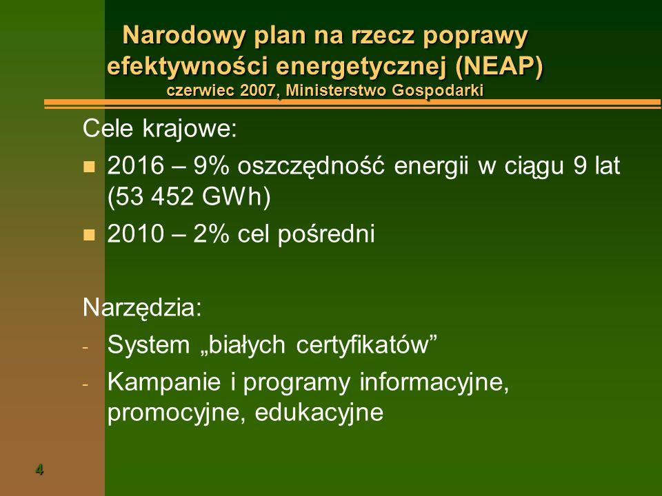 Narodowy plan na rzecz poprawy efektywności energetycznej (NEAP) czerwiec 2007, Ministerstwo Gospodarki