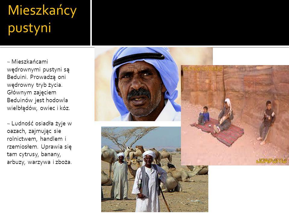 Mieszkańcy pustyni