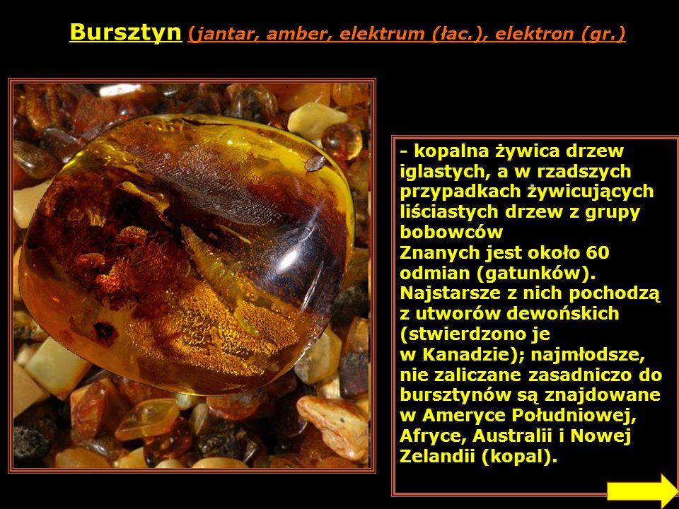 Bursztyn (jantar, amber, elektrum (łac.), elektron (gr.)