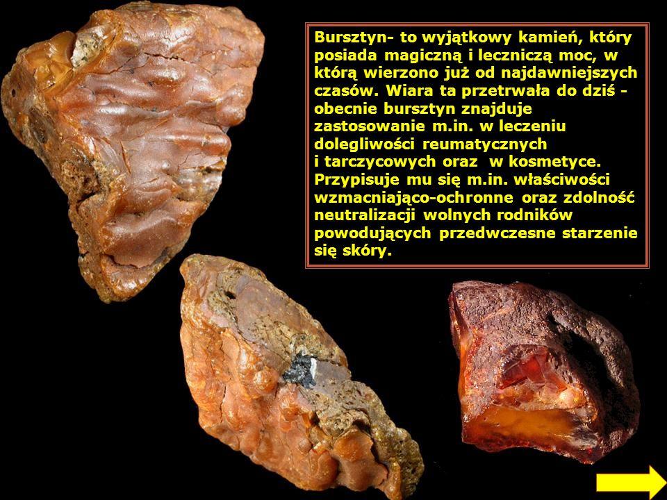 Bursztyn- to wyjątkowy kamień, który posiada magiczną i leczniczą moc, w którą wierzono już od najdawniejszych czasów. Wiara ta przetrwała do dziś - obecnie bursztyn znajduje zastosowanie m.in. w leczeniu dolegliwości reumatycznych i tarczycowych oraz w kosmetyce. Przypisuje mu się m.in. właściwości wzmacniająco-ochronne oraz zdolność neutralizacji wolnych rodników powodujących przedwczesne starzenie się skóry.