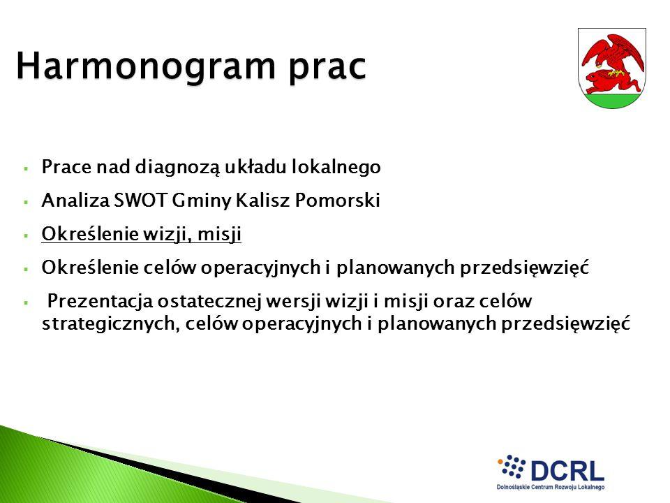 Harmonogram prac Prace nad diagnozą układu lokalnego