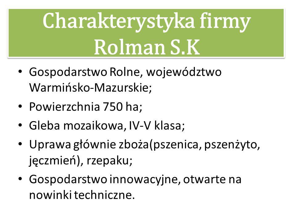 Charakterystyka firmy Rolman S.K