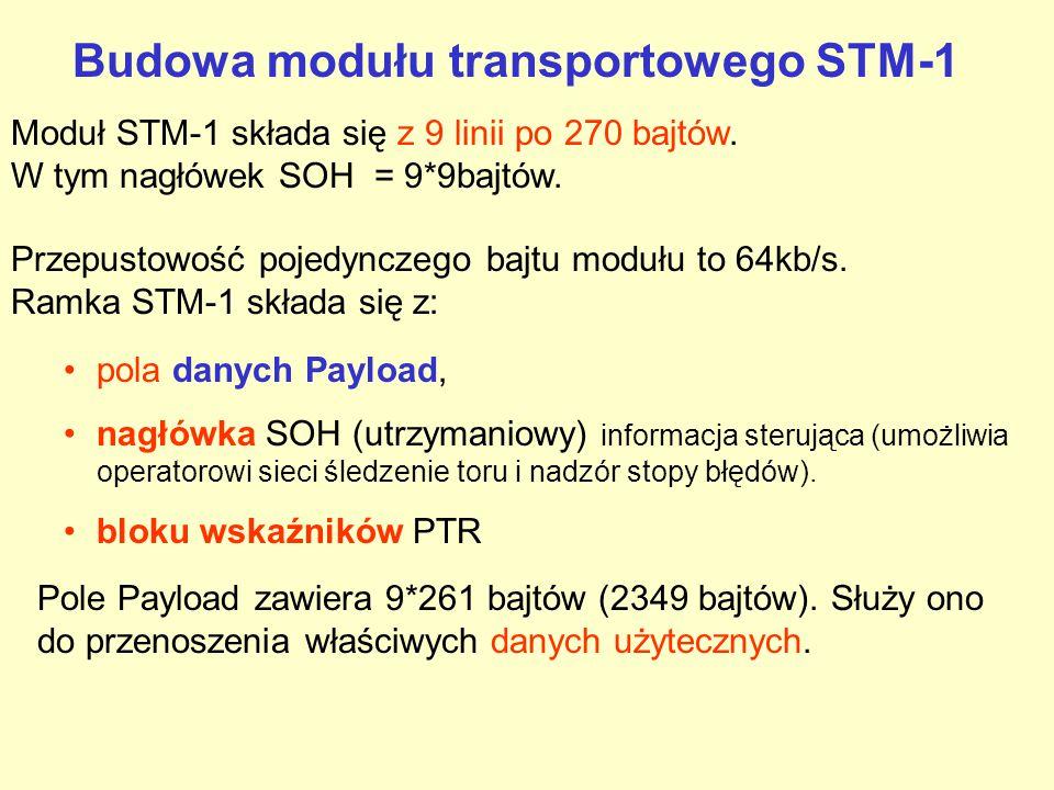 Budowa modułu transportowego STM-1