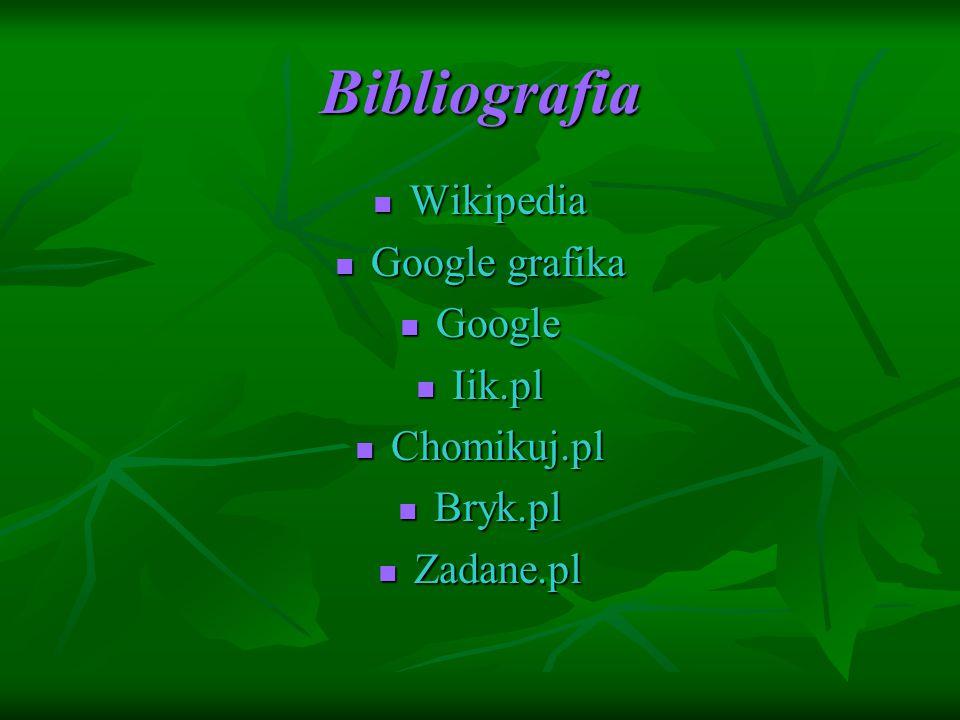 Bibliografia Wikipedia Google grafika Google Iik.pl Chomikuj.pl