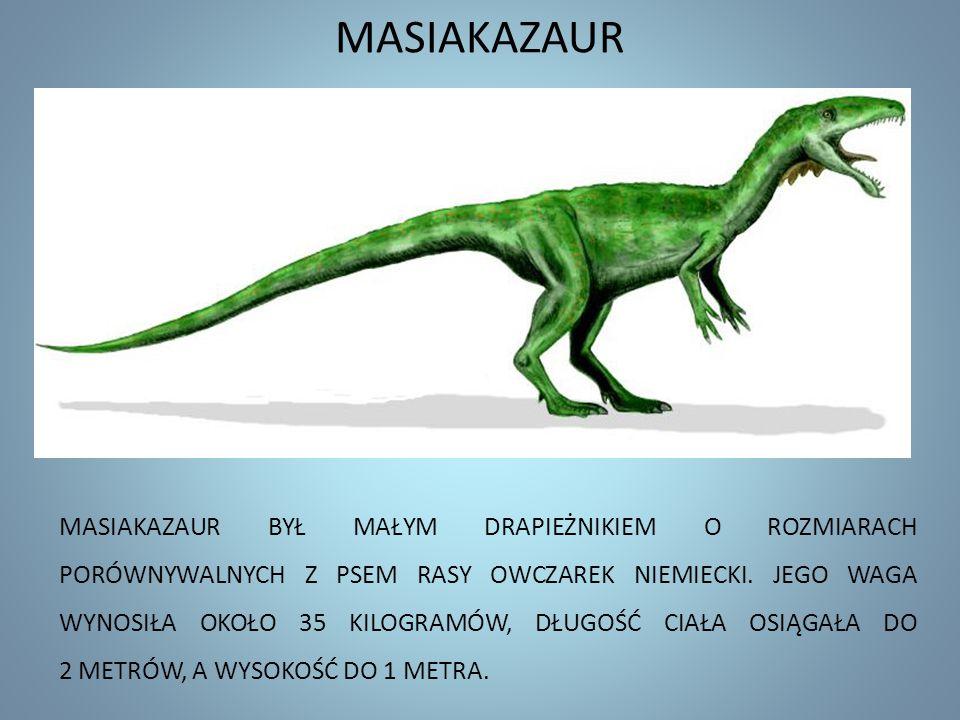 MASIAKAZAUR