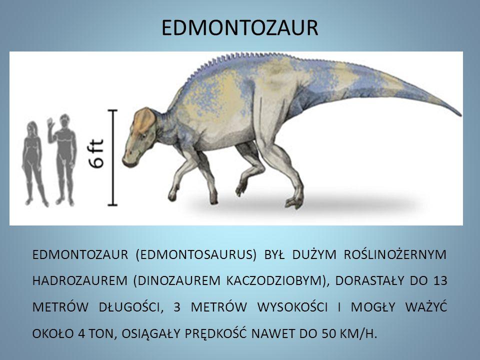 EDMONTOZAUR