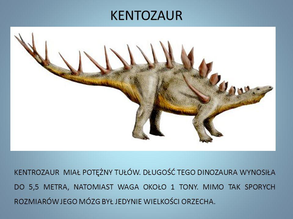 KENTOZAUR