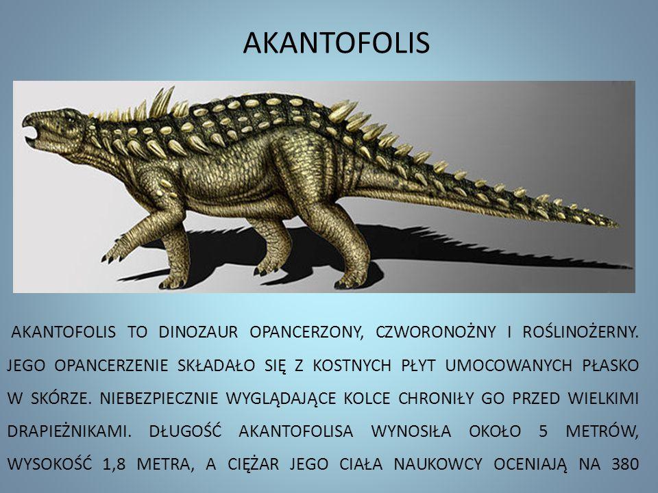 AKANTOFOLIS