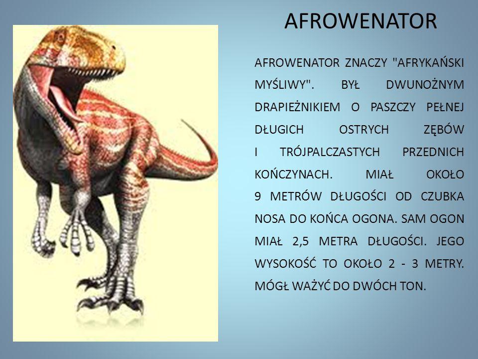 AFROWENATOR