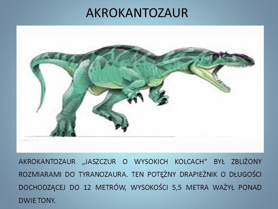 AKROKANTOZAUR