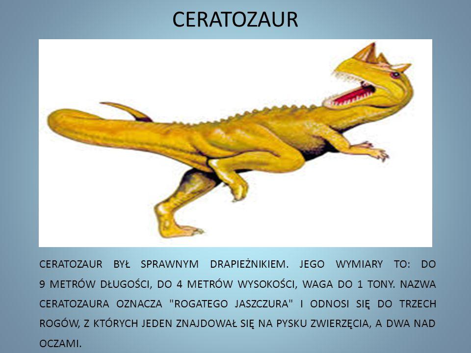 CERATOZAUR