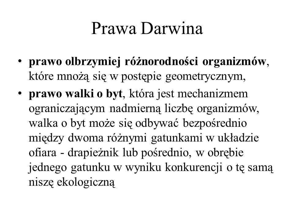 Prawa Darwina prawo olbrzymiej różnorodności organizmów, które mnożą się w postępie geometrycznym,