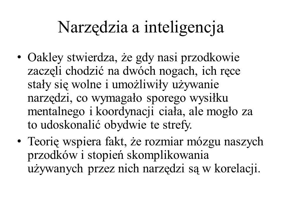 Narzędzia a inteligencja