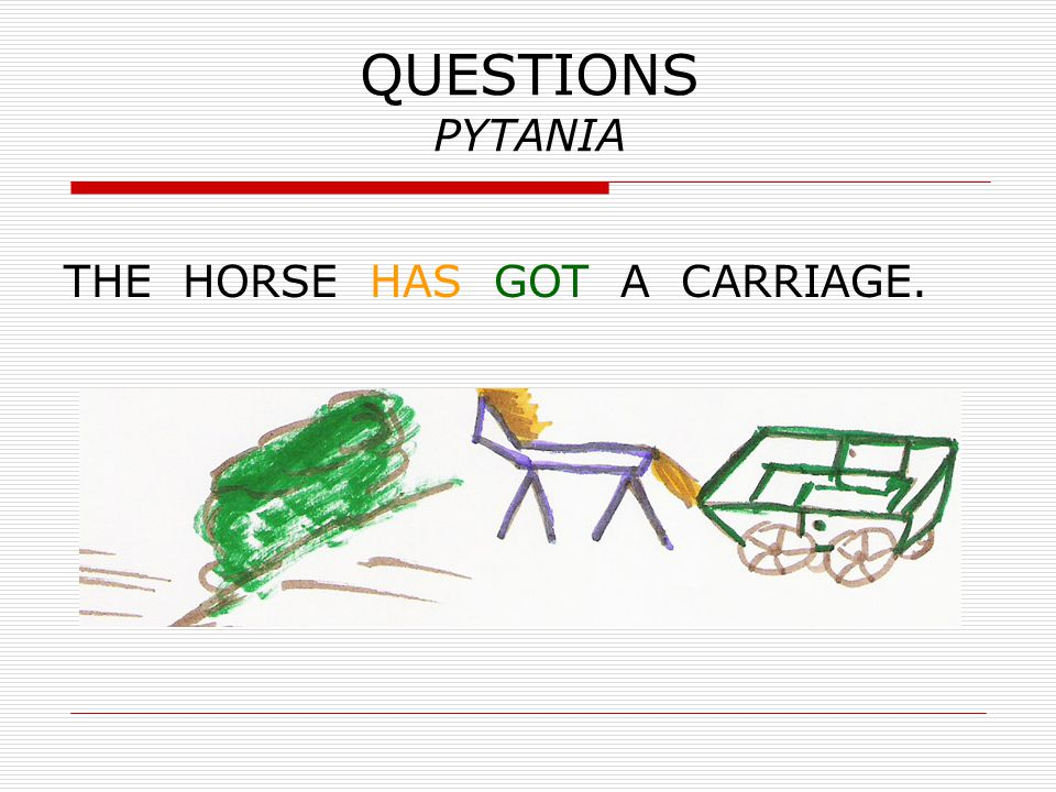 QUESTIONS PYTANIA THE HORSE HAS GOT A CARRIAGE.