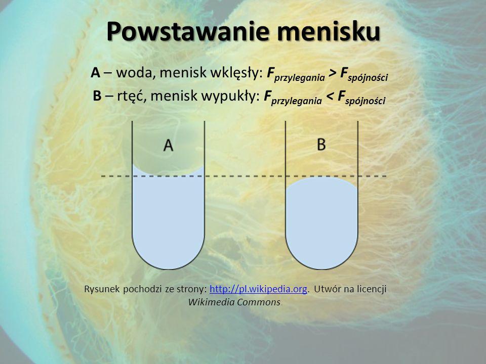 Rysunek pochodzi ze strony: http://pl.wikipedia.org. Utwór na licencji