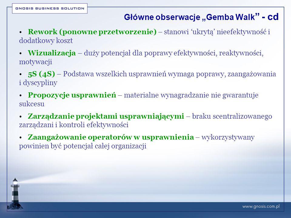 """Główne obserwacje """"Gemba Walk - cd"""