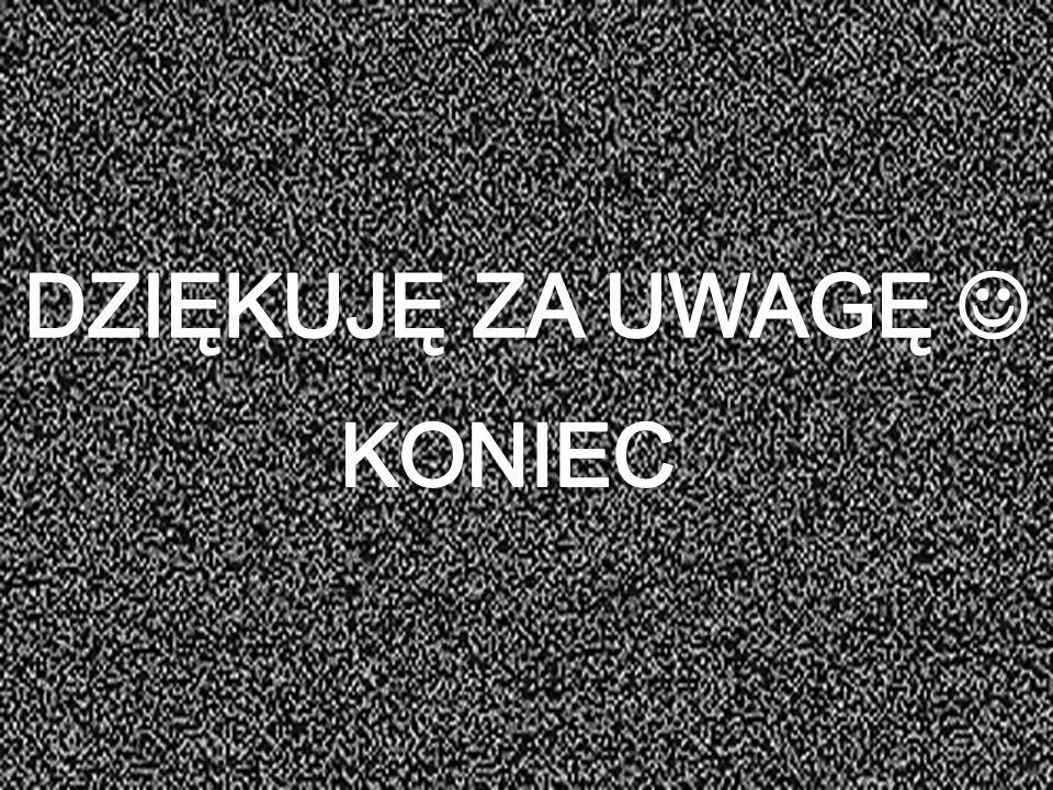 DZIĘKUJĘ ZA UWAGĘ  KONIEC Ks. dr Jarosław Lisica