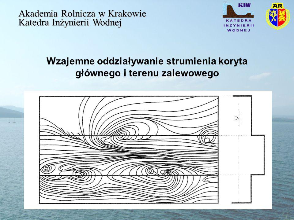 Wzajemne oddziaływanie strumienia koryta głównego i terenu zalewowego