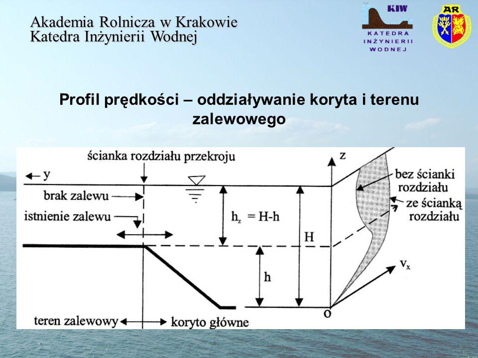 Profil prędkości – oddziaływanie koryta i terenu zalewowego